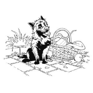 The Wizard Of Oz Toto From The Wizard Of Oz Coloring Page Toto