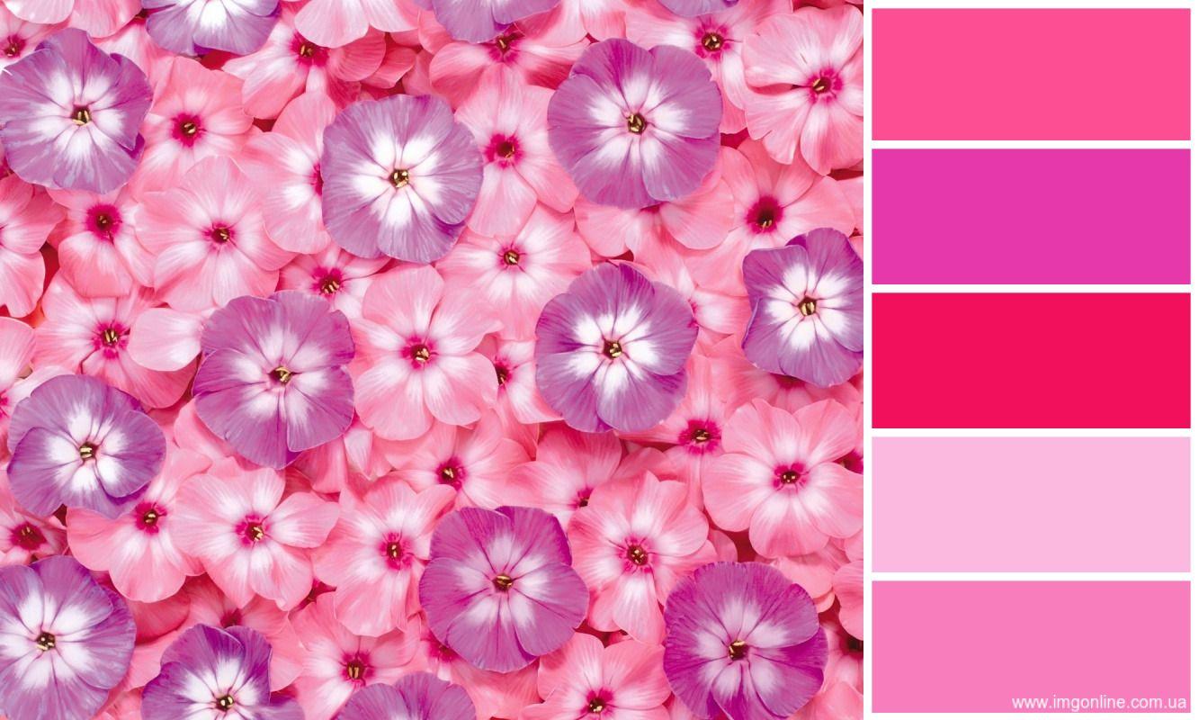 Pin Von Diana Angelica Auf Colorbook Farbkombination Farbtrends Wandfarbe