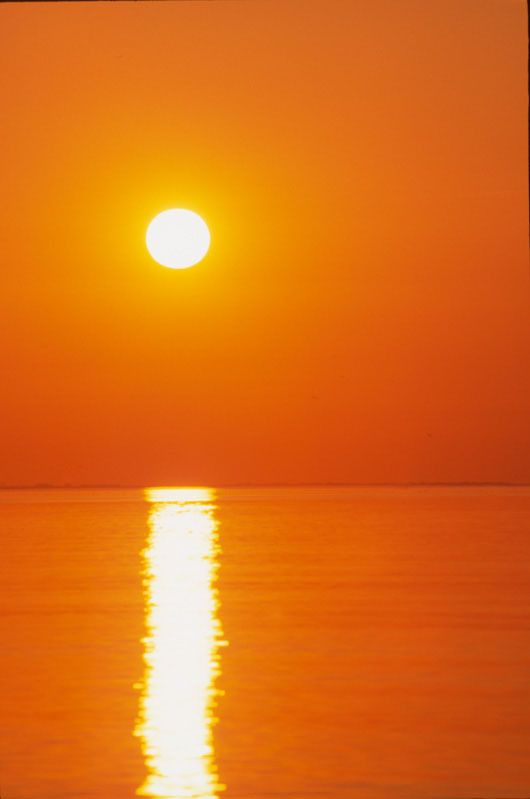 Orange Arancio Oranje Ã'ªãƒ¬ãƒ³ã'¸ Appelsin Oranzhevyj Naranja Colour Texture Style Form Esthetique Orange Fond D Ecran Orange Couleur Orange