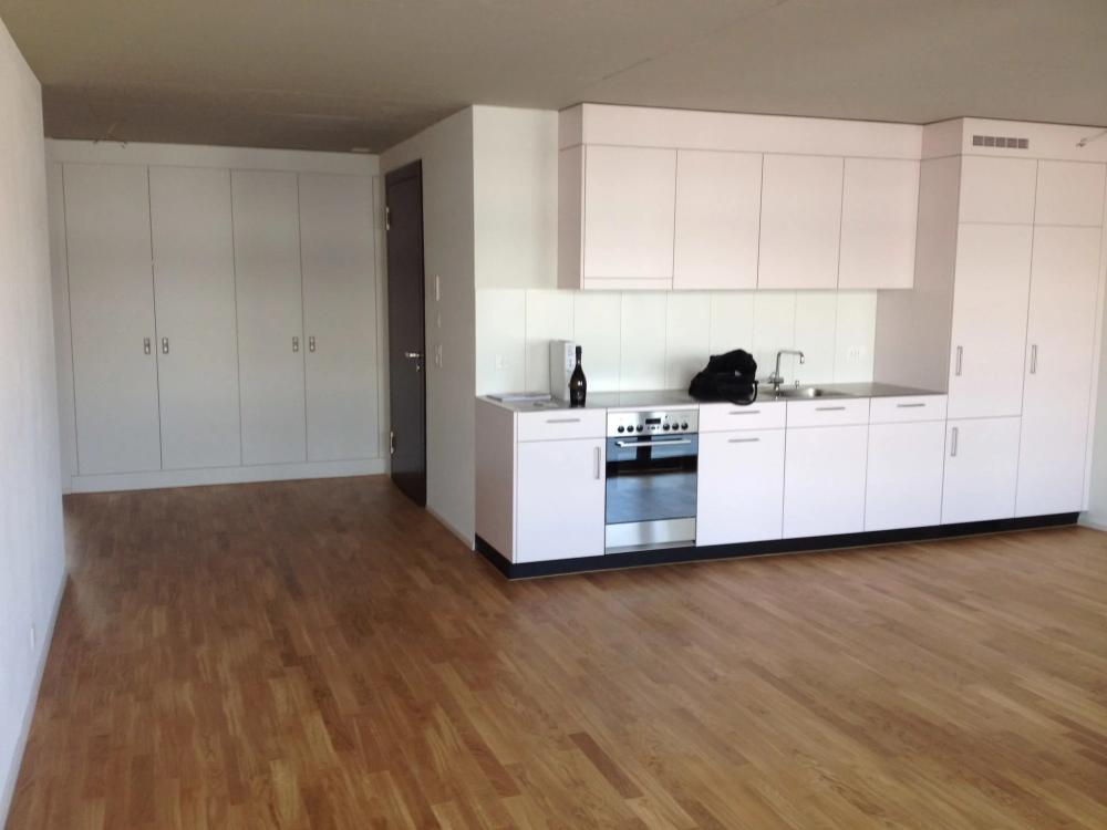 Wohnen Amrietpark Schlieren Wohnung Mieten Homegate Ch In 2020 Wohnung Mieten Wohnung Einbauschrank
