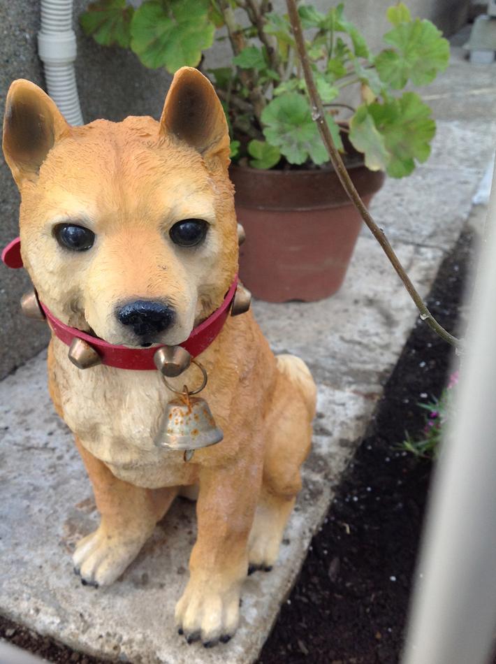 Japanese Shiba Inu 柴犬の置物 Shiba Inu Puppies Shiba