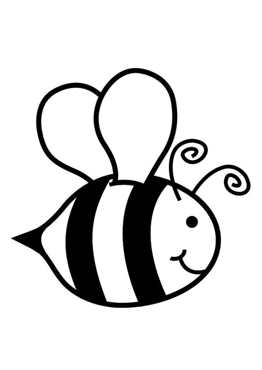 Coloring Page Honey Bee Img 29039 Bee Coloring Pages Bee Images Bee Drawing