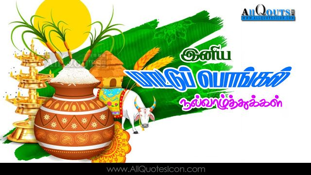 Mattu pongal wishes in tamil quotes hd wallpapers best inspiration happy mattu pongal in tamil language hd wallppaers new mattu pongal 2017 greetings whatsapp tamil quotes images m4hsunfo Gallery
