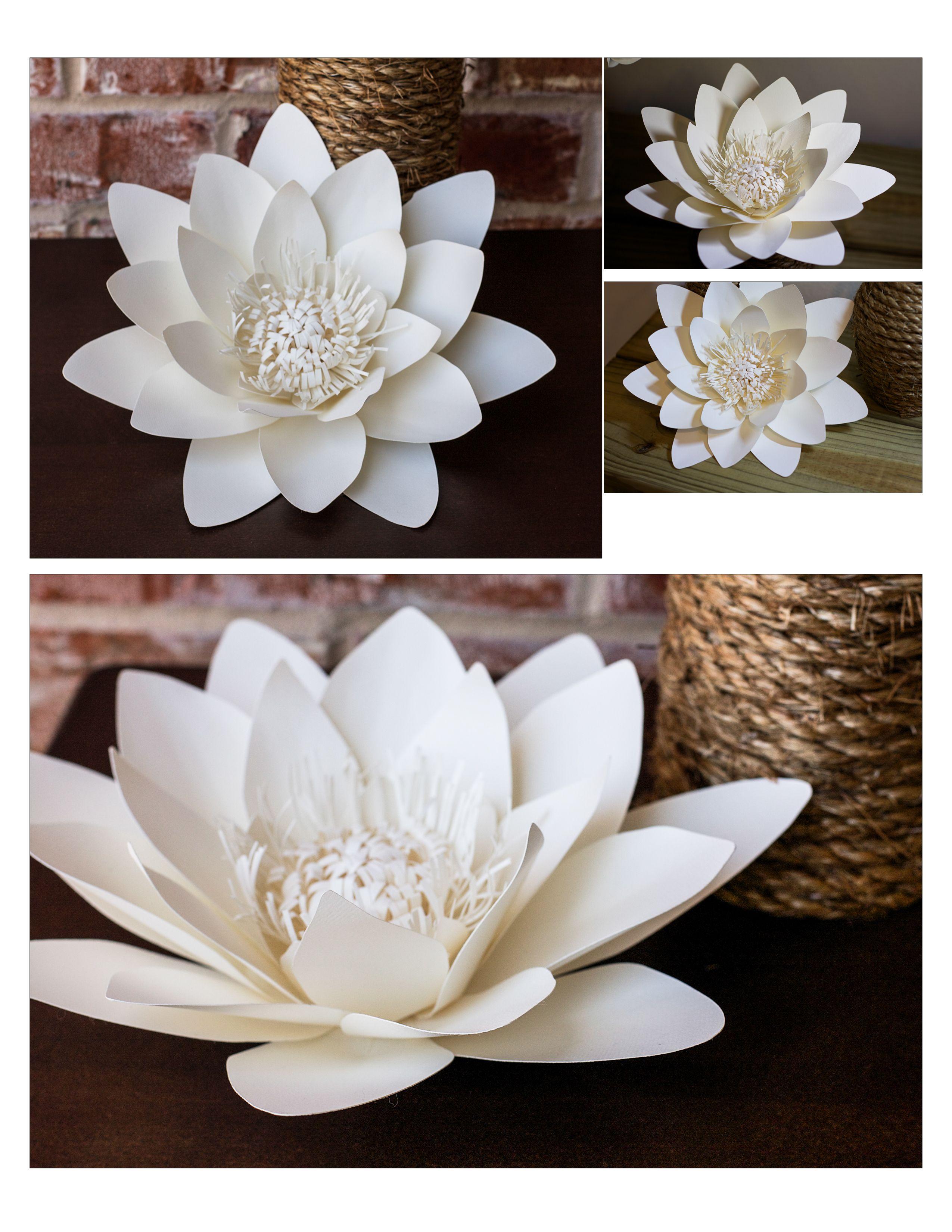 Waterlily paper flower  flor de papel  Pinterest  Flower Flowers