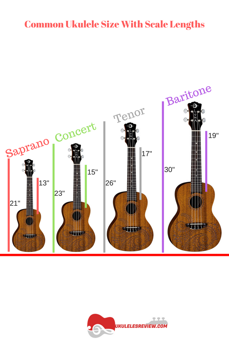 Common Ukulele Sizes With Scale Lengths Ukulele Ukulele Music Ukulele Chords