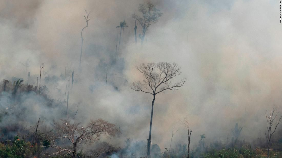 The Myths And The Truth About The Fires In The Amazon Current