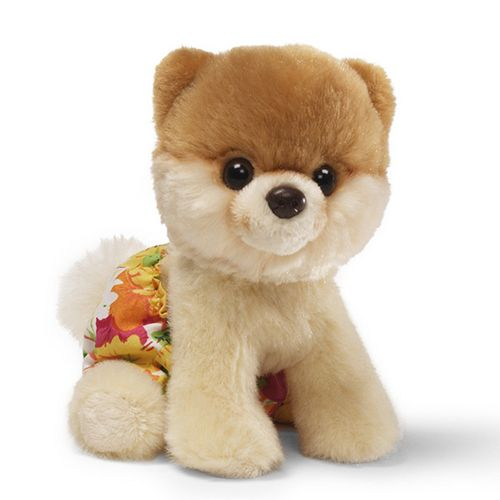 Pin By Design Milk On Design Milk Pets Boo The Cutest Dog World Cutest Dog Girl Stuffed Animals