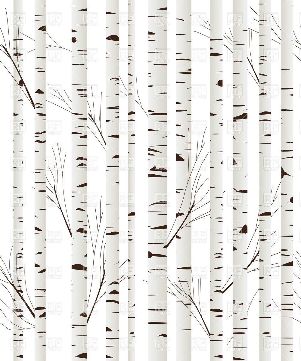 Back &gt Gallery For Black And White Birch Tree Clip Art