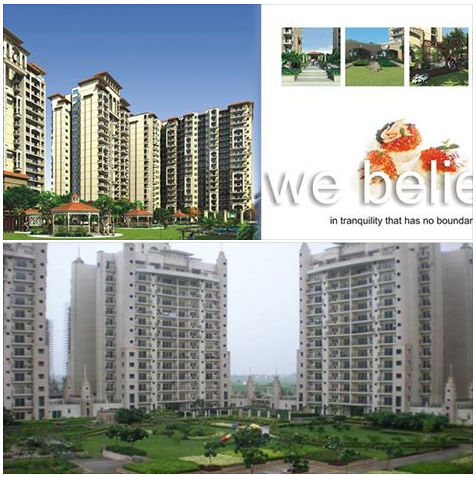 How to find New project in noida | Property at noida | Apartments at Noida - There are many realtors or real estate companies who offer new project in noida and apartments for rent in Noida and Greater Noida areas.  http://newprojectinnoida.wordpress.com/