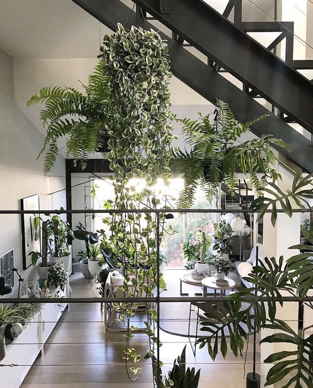 Design Your Workplace To Become An Urban Jungle Promote Healthy Working Conditions That Relieve Employees Of Stress A Indoor Plants Plants Small Indoor Plants