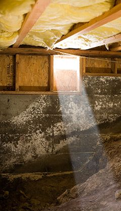 4 Things You Didn T Know Are In Your Crawlspace Https Www Atticstar Com Things Didnt Know Crawlspace Pier And Beam Foundation Crawlspace Foundation Repair