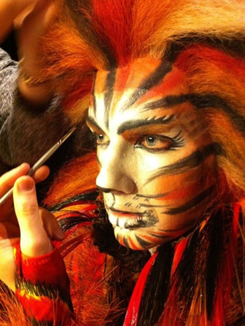 Image Result For Macavity Cats Face Stuff Cat Makeup