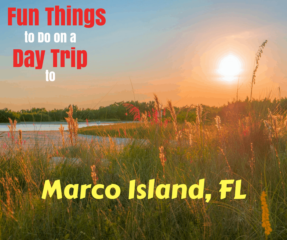 Must See Things On a Day Trip to Marco Island, FL in 2020