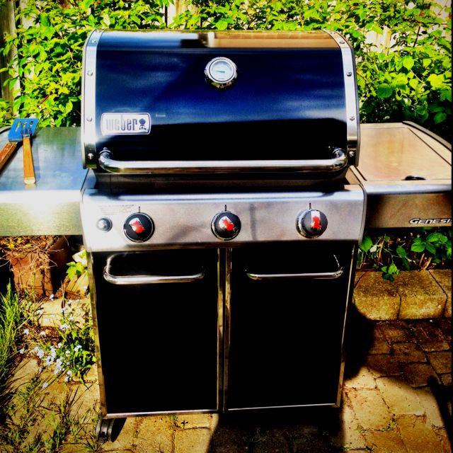 Weber Genesis E 320 Outdoor Decor Decor Gas Grill