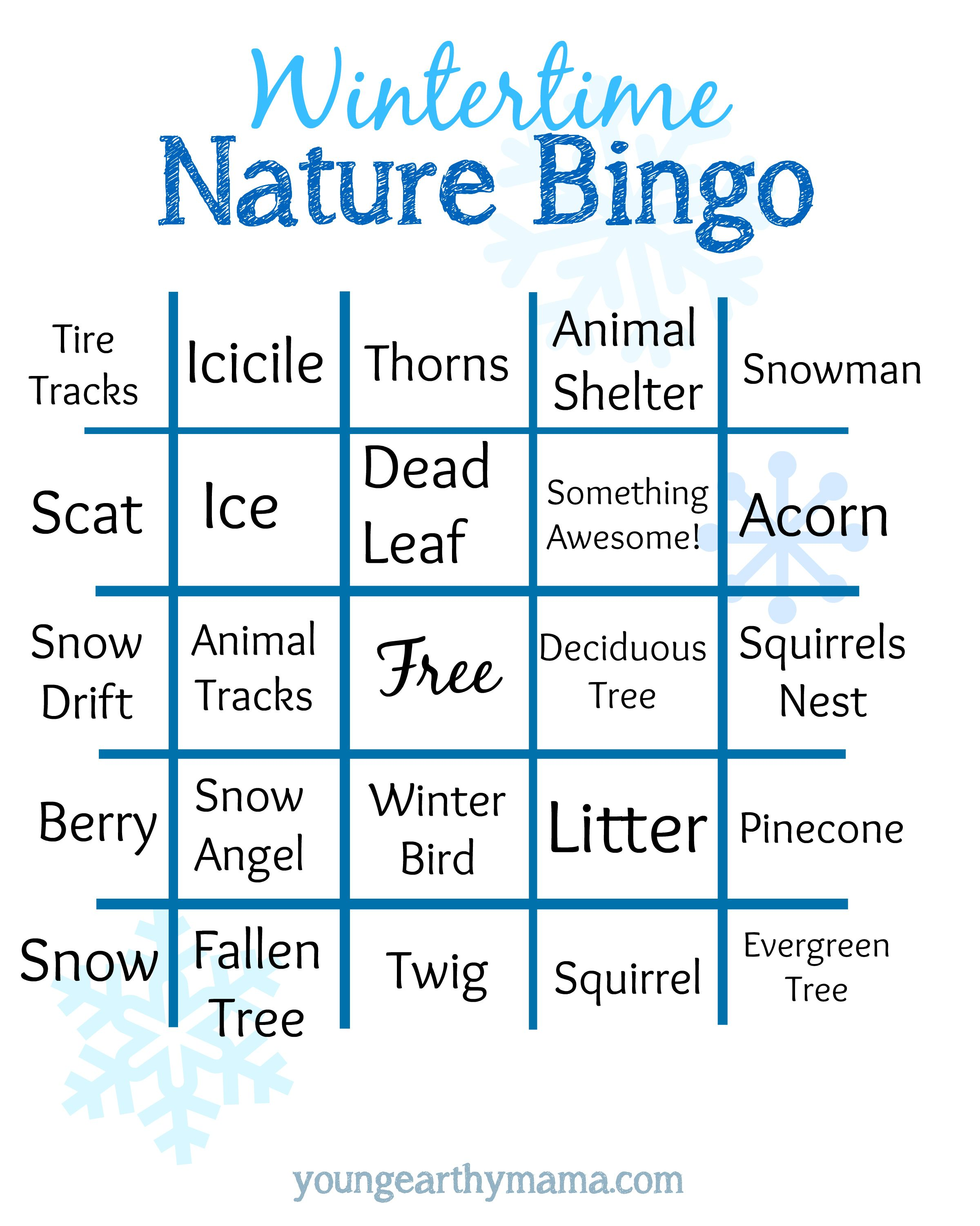 Here S A Free Winter Nature Bingo Scavenger Hunt Printable For Kids Of All Ages Enjoy Winter Nature Bingo For Kids Recreation Therapy