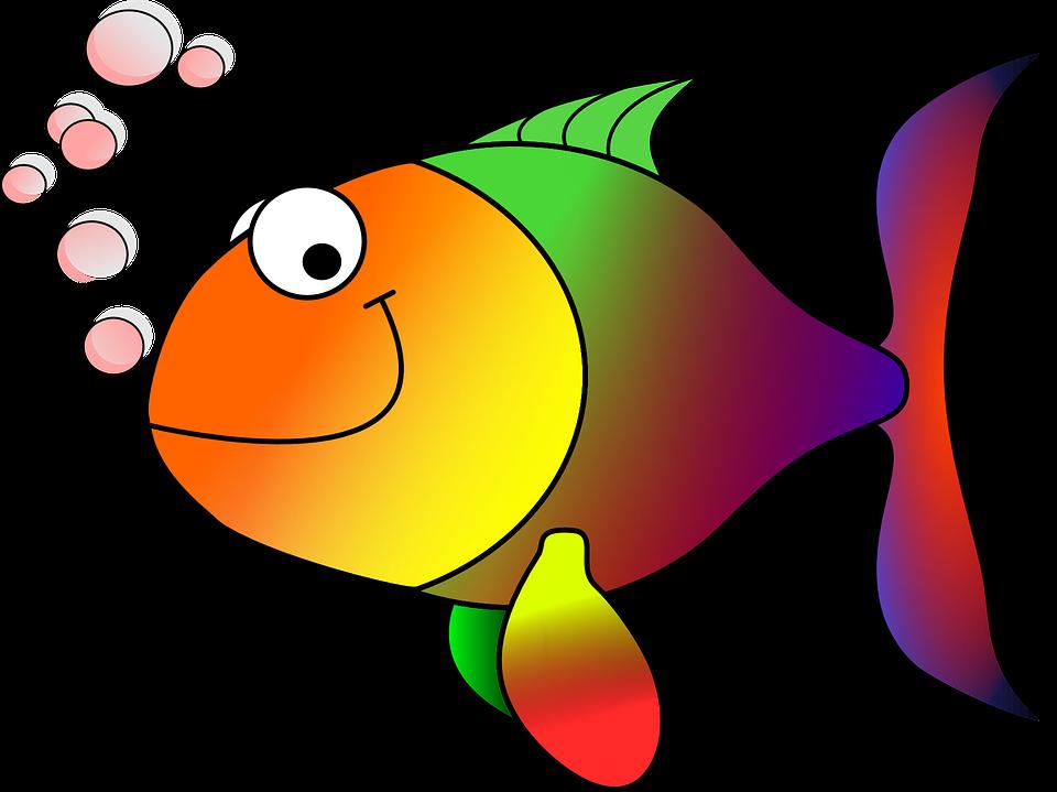 free image on pixabay goldfish fish koi carp pinterest koi rh pinterest com