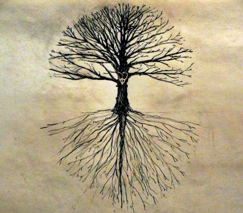 Tree Drawing Tumblr Tree Tatoos Pinterest Art Drawings