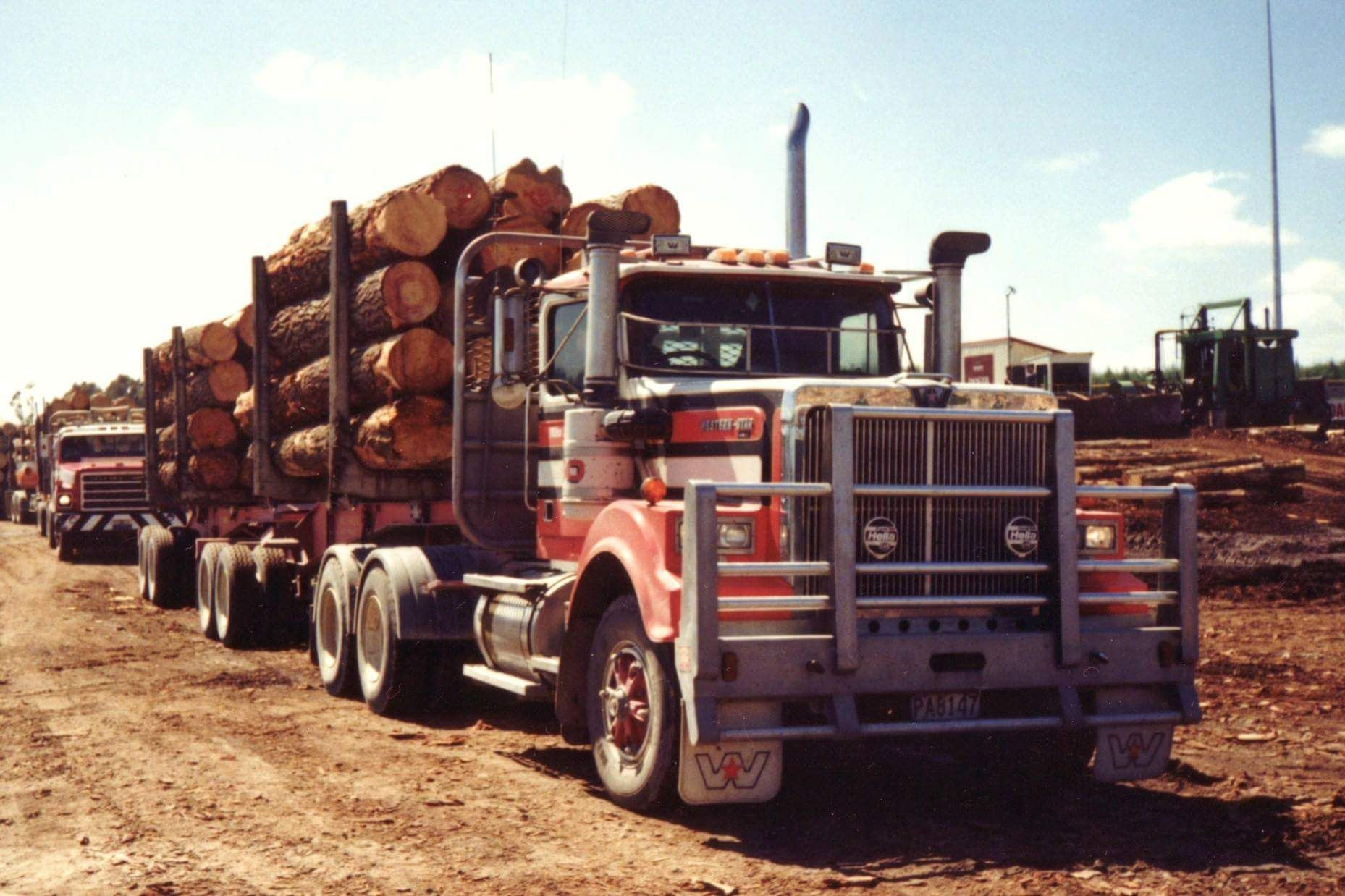 Western Star B Double Log Truck Of Mike Lambert Tauranga N Z White Truck Trucks Semi Trucks