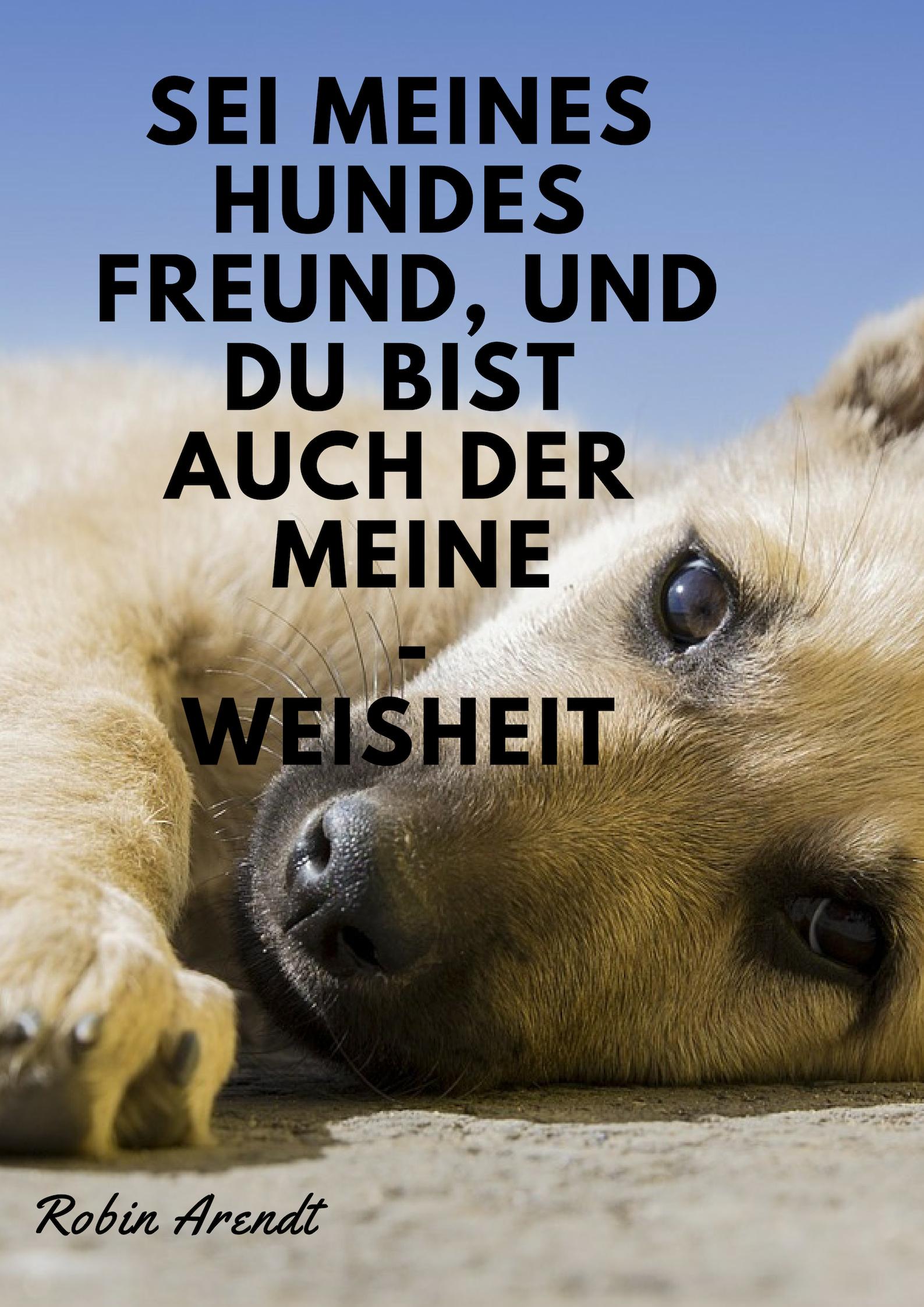 Sei Meines Hundes Freund Und Du Bist Auch Der Meine Weisheit Robin Arendt Hund Zitate Liebe Deutsch Spruche Freundschaft Hund Zitat Hunde Hunde Erziehen
