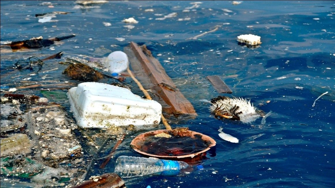 A discussion on the problem of sea dumping in australia