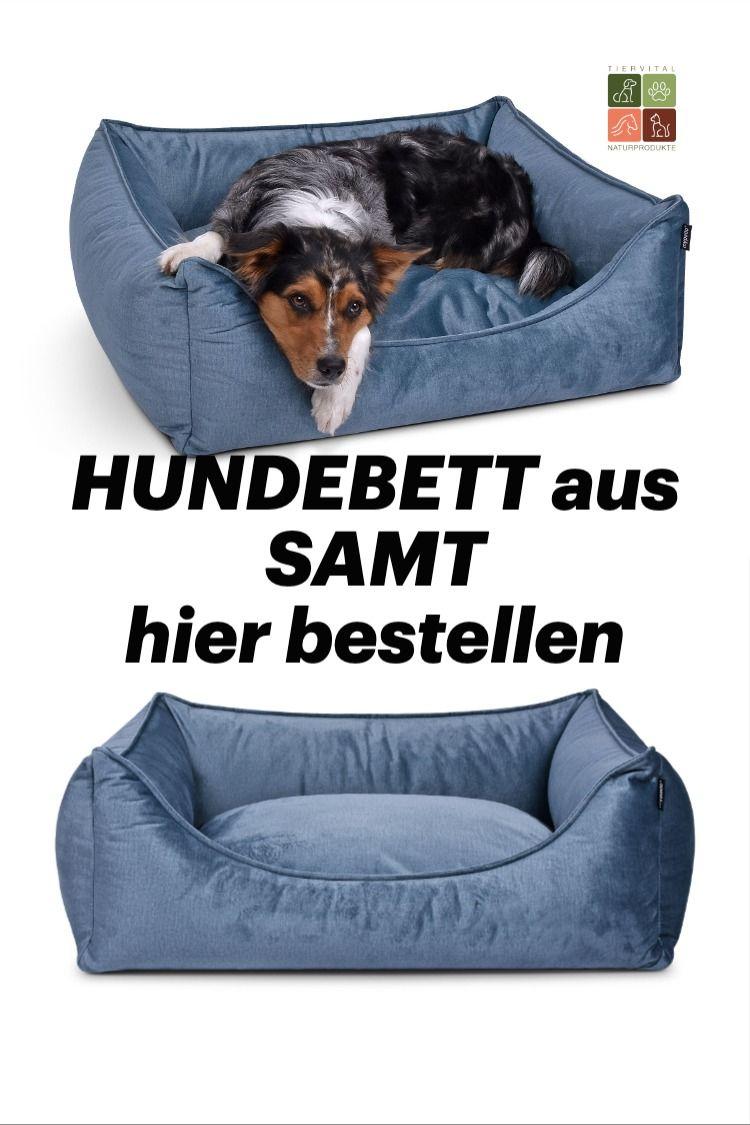 Hier Bestellen Das Schone Und Elegante Hundebett Aus Edlem Samt Bezug In 2020 Hunde Bett Hunde Hunde Kissen