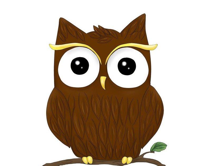 30 Gambar Hewan Kartun Burung Hantu Hewan Burung Hantu Grafis Gambar Gratis Di Pixabay Download Coloring Pages Owls Gifs Burung Hantu Gambar Hewan Kartun
