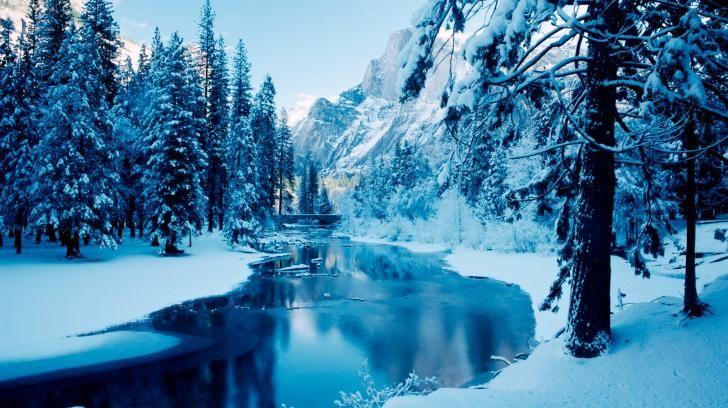 Winter Scene Wallpaper 2560x1600 Hd Wallpaper Winter Wallpaper Hd Winter Background Winter Scenery