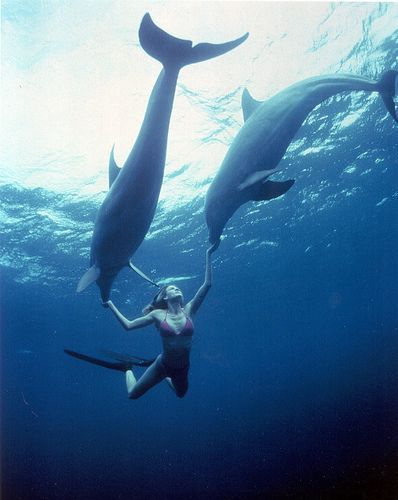 """Résultat de recherche d'images pour """"image océan sous pinterest"""""""
