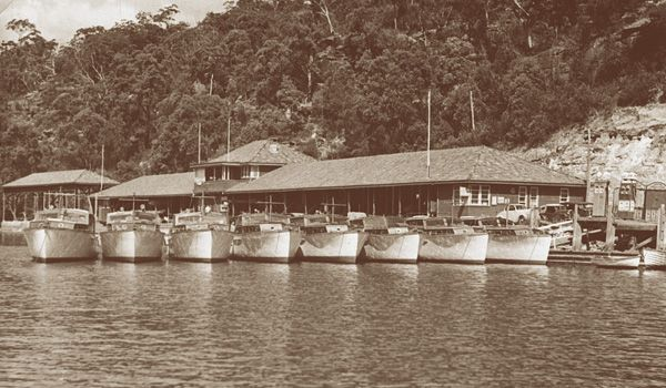 The Halvorsen fleet on the jetty at Bobbin Head