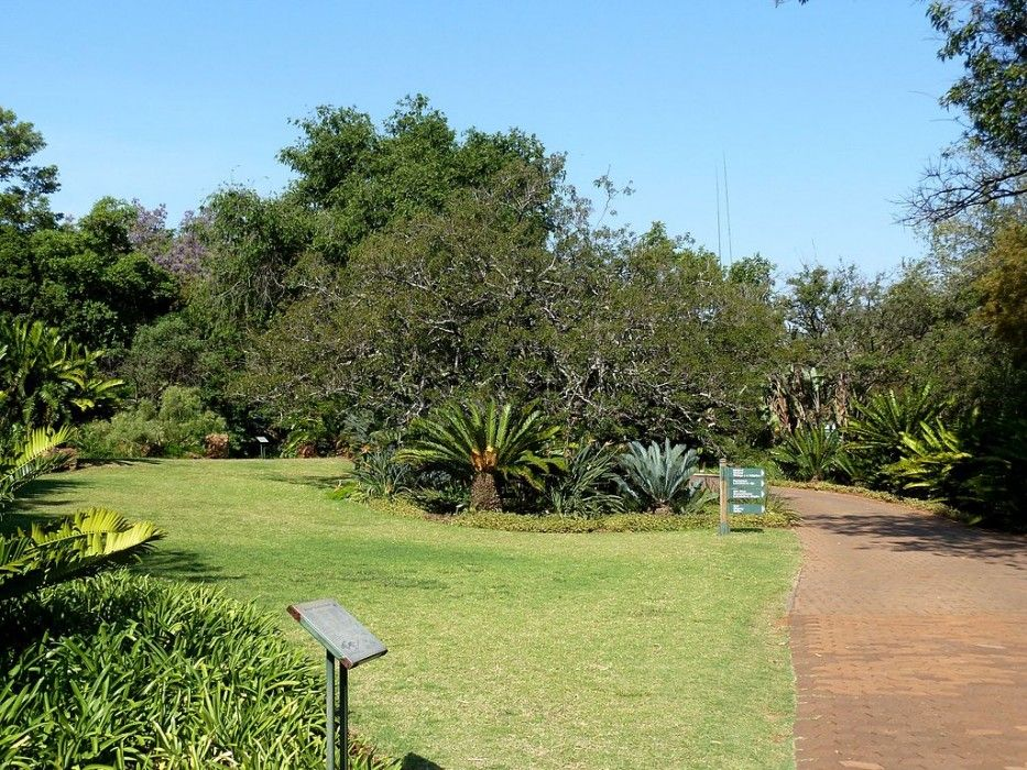 Fun Things To Do For Less Than R200 National Botanical Gardens Botanical Gardens Organic Gardening