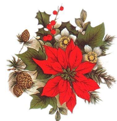 Tube De Noel Tas Boyama Christmas Christmas Poinsettia Ve