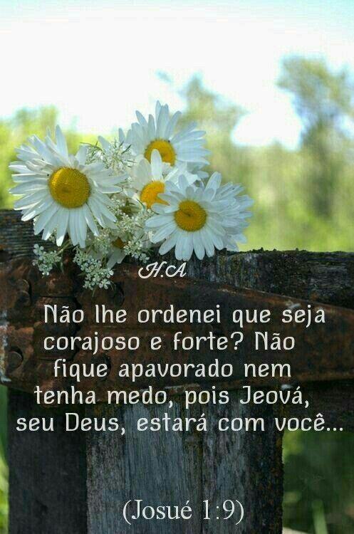 Pin De Eliana Santos Em A Biblia No Meu Dia A Dia Mensagem De