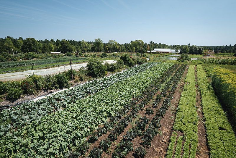J.M. Fortier and the Rise of the HighProfit Micro Farm