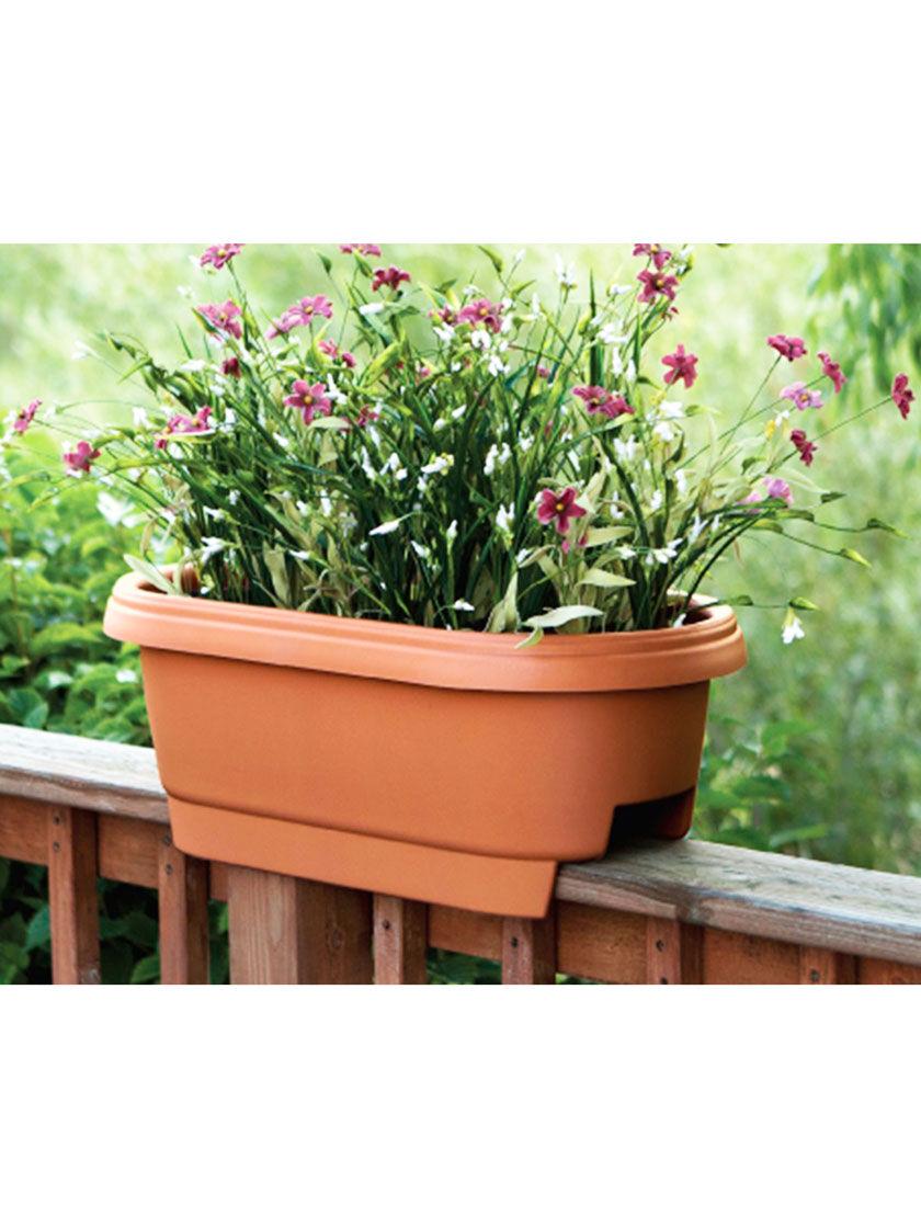 Pin On Gardening Tips Ideas