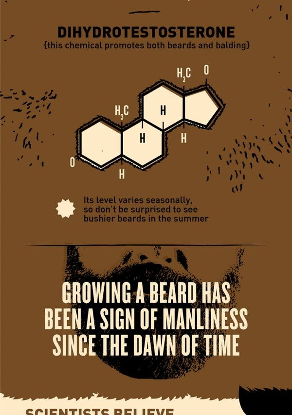 beards facts - Google Search
