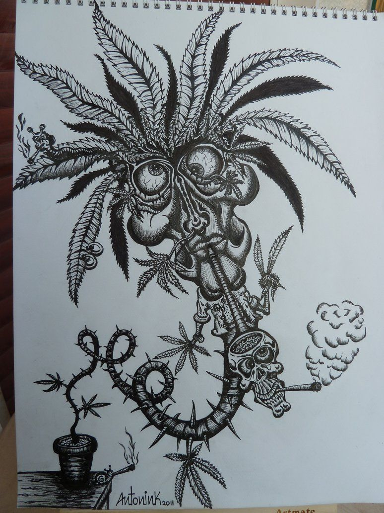 Tattoo Weed Leaf Drawings Pesquisa Google Doodles