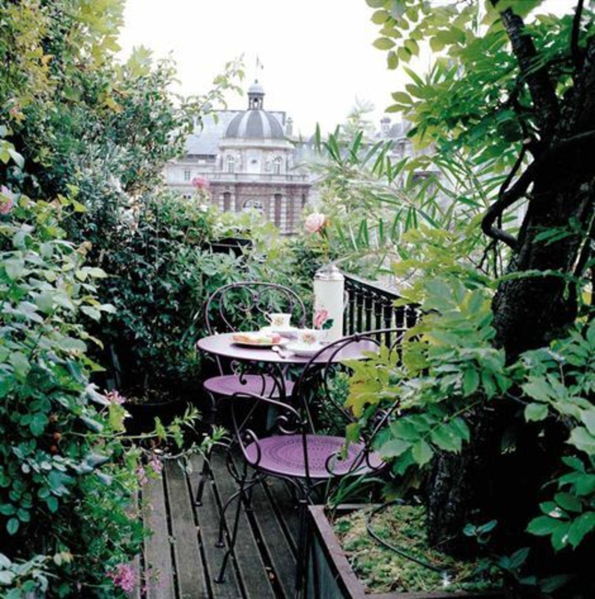 balcon luxuriant / petit jardin anglais   Terasse de ville ...