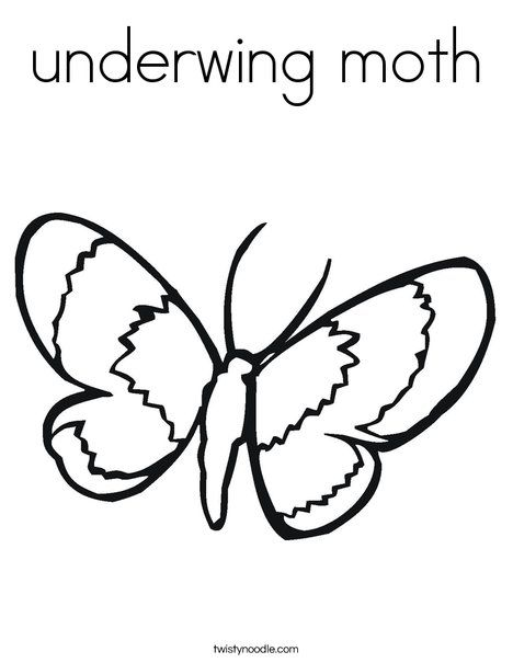Underwing Moth Coloring Page Twisty Noodle Insect Coloring Pages Butterfly Coloring Page Coloring Pages