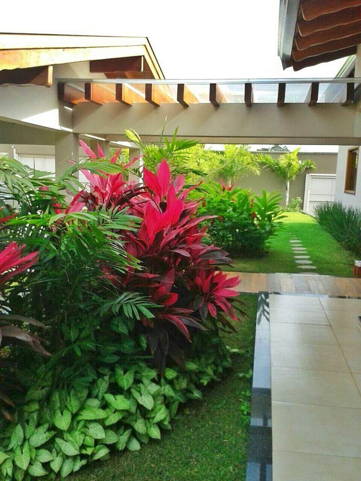 Casa N.M.: Jardins Tropicais por Eneida Lima Landscaping   - Tropical Landscaping Ideas - #Casa #eneida #Ideas #jardins #Landscaping #lima #por #tropicais #tropical