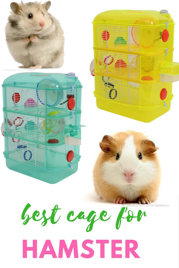 Details About Hamster House Mouse Castle Habitat Mice Rat Cage