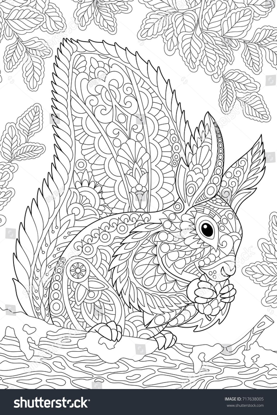 Coloring Page Of Squirrel Eating Pine Cone Freehand