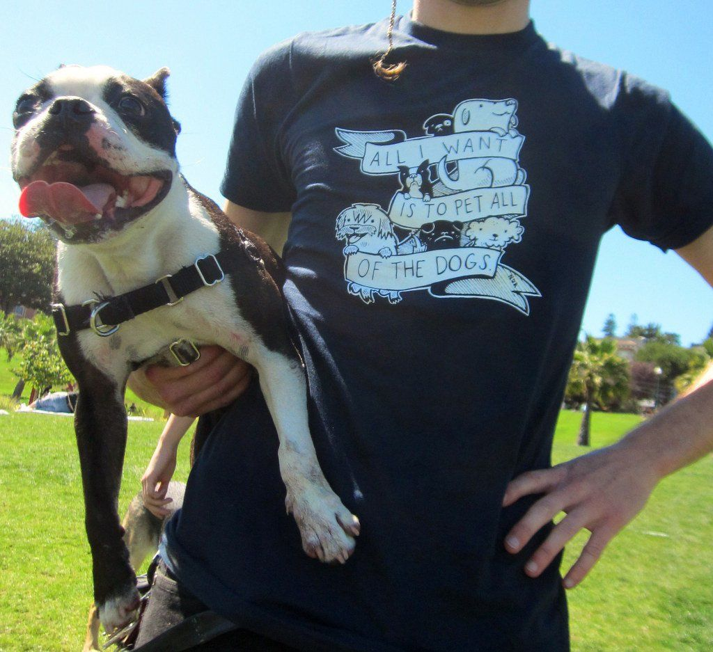 Shirt All I Want Is To Pet All Of The Dogs By Nation Of Amanda