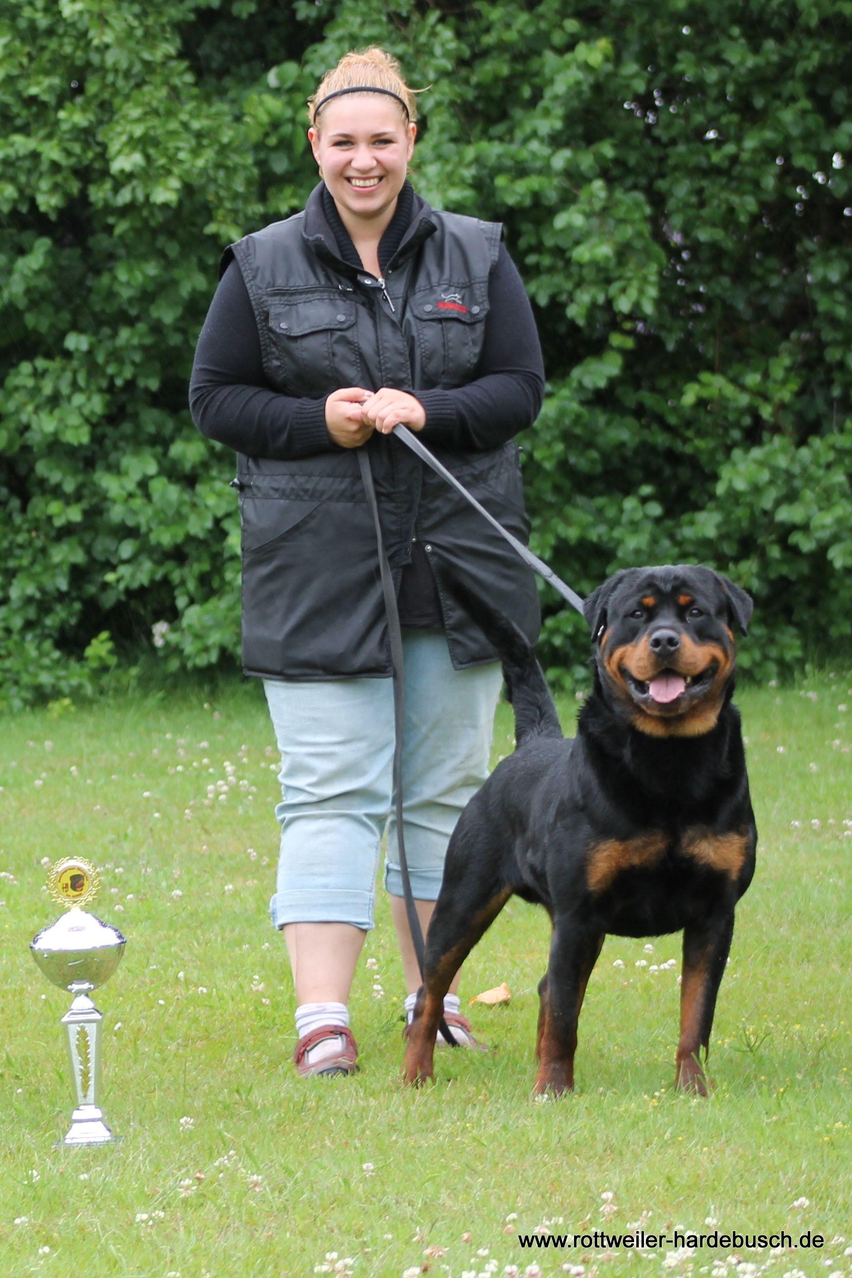 Jaguar Von Shambala Und Fr J Kulzer Eschweiler Deutschland Rottweiler Breed Rottweiler Hotties