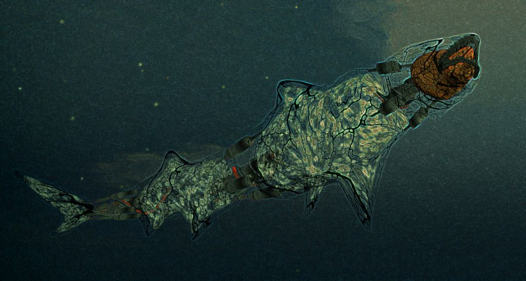 Shark by Igor Ballyhoo