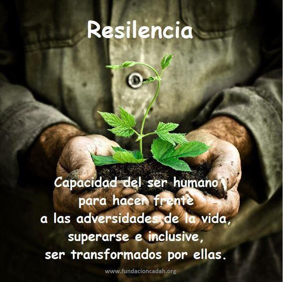 Resilencia: capacidad del ser humano para hacer frente a las adversidades  de la vida, superarse e inclusive, ser… | Frases, Frases y poemas, Frases  pensamientos