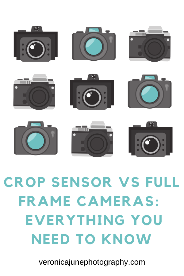 Crop Sensor Vs Full Frame Cameras Everything You Need To Know Photography Apps Photography Terms Composition Photography