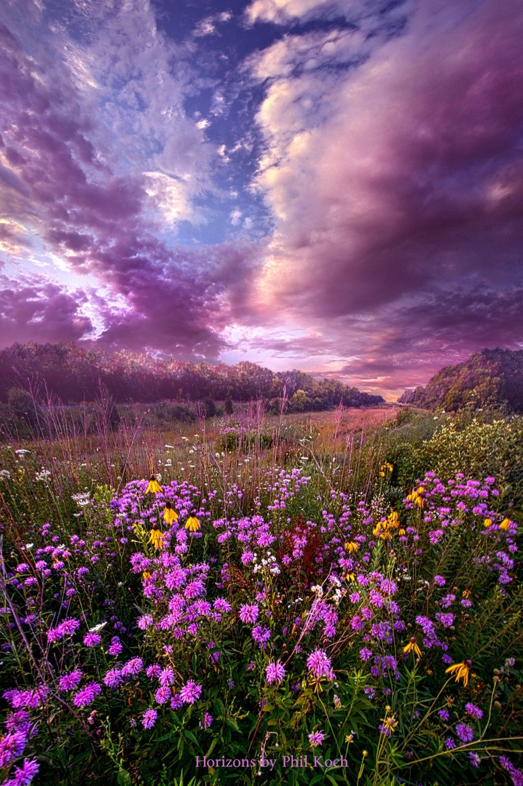 Wisconsin Horizons By Phil Koch Turning Landscapes Spring Landscape Photography Landscape Photography Nature Nature Photography