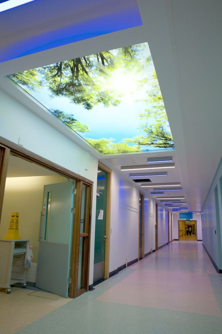 3d blue flowers corridor entrance wall mural decals art print lighting concepts ceiling ideas hospitals bright ideas engineers new looks facade dental bespoke