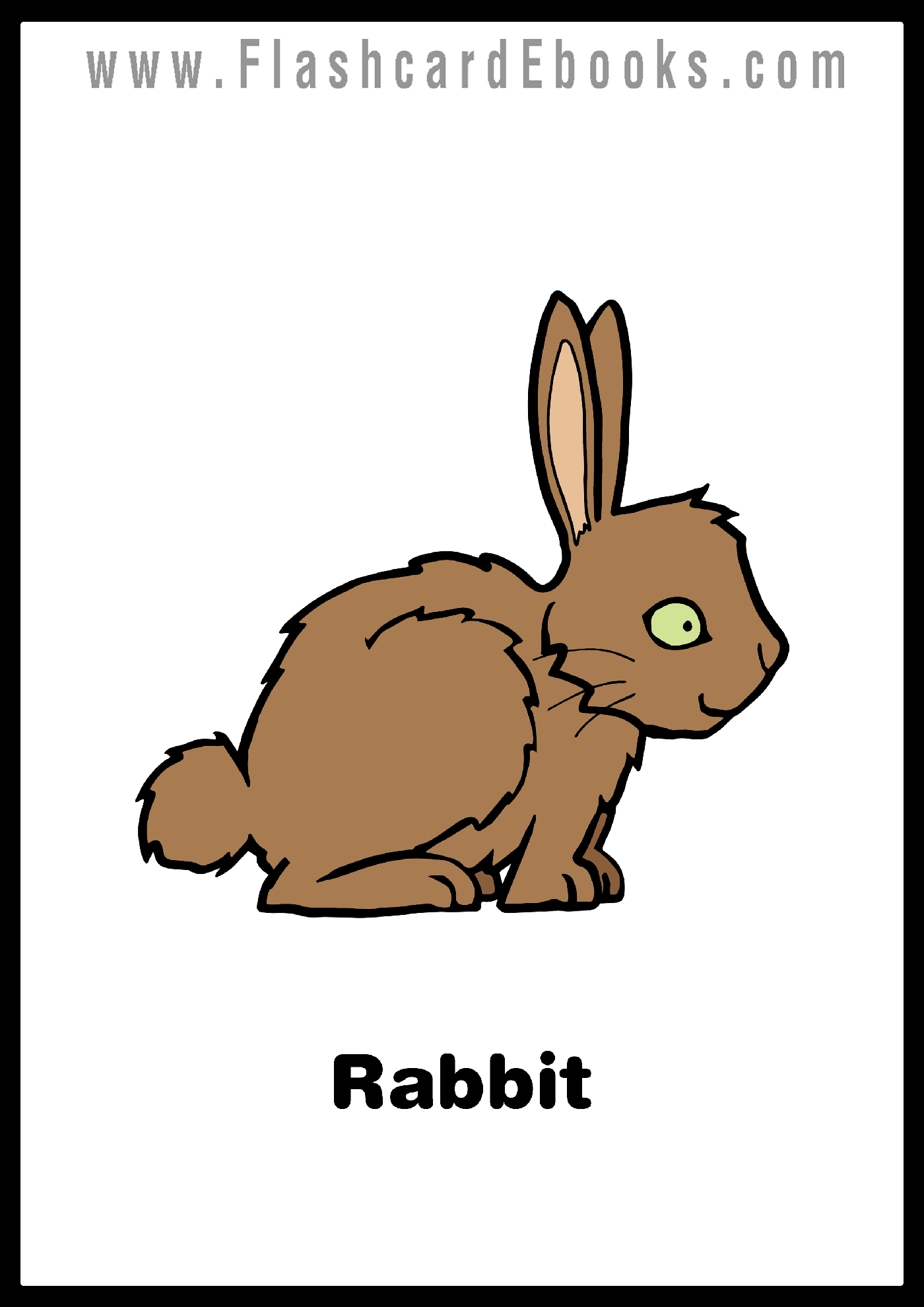 English Flashcard Kindle Animals Rabbits