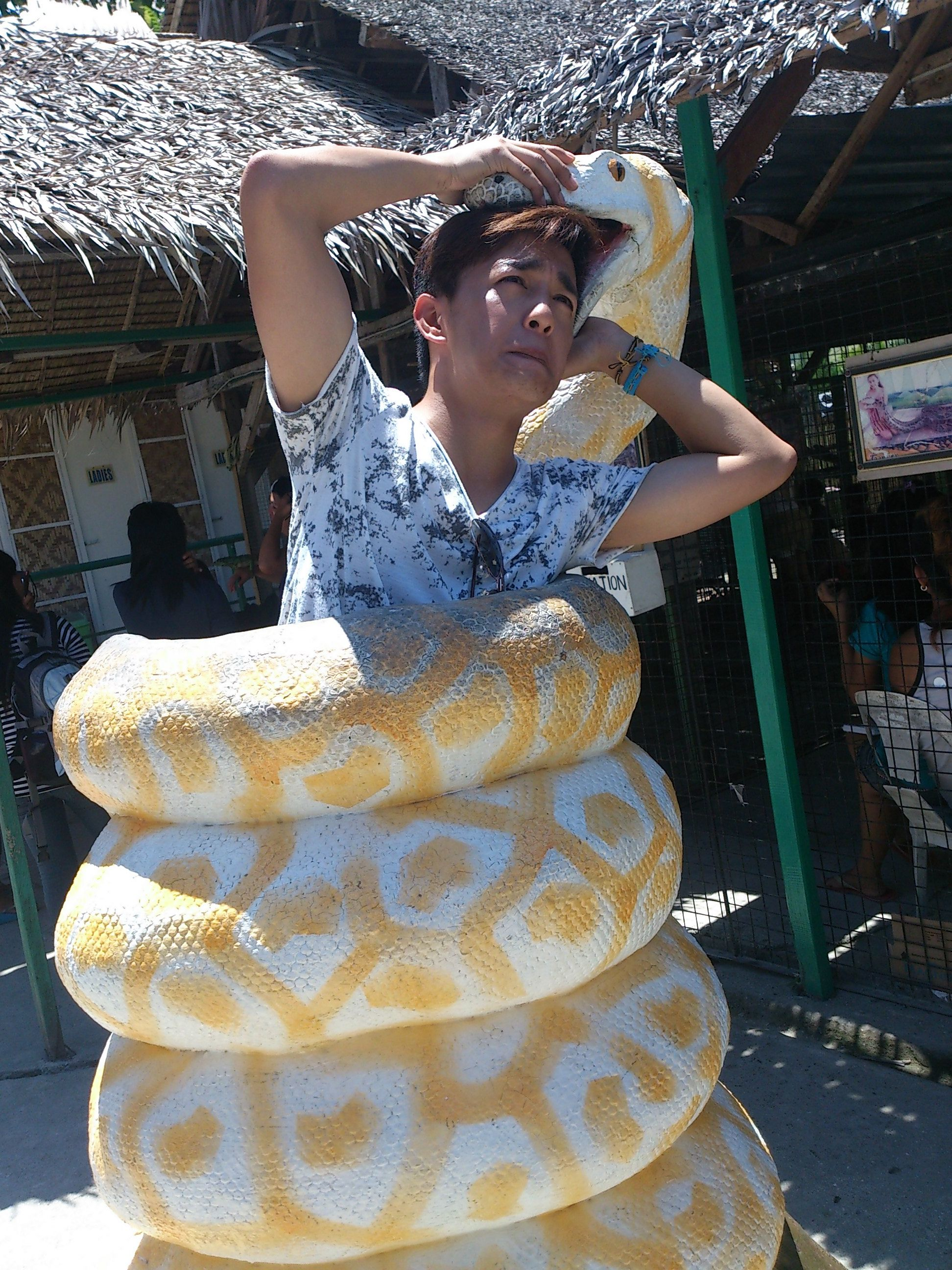 A Fake Snake Trying to Swallow me... hahaha